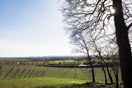 Michel à la rencontre de viticulteurs en Normandie